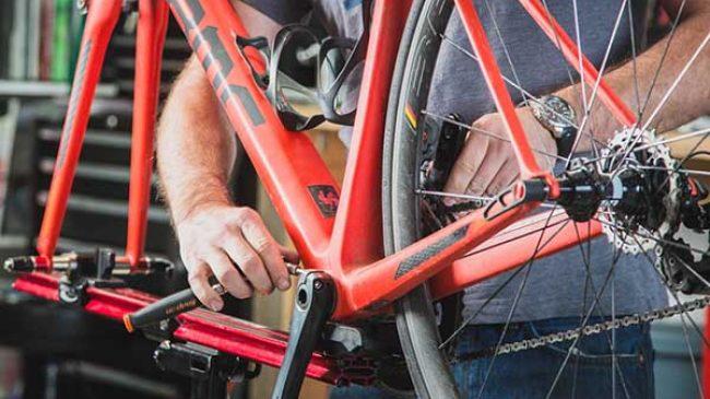 trek bikes mississauga
